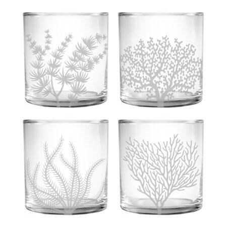 Coral Assortment on whiskey slim DOR Glasses